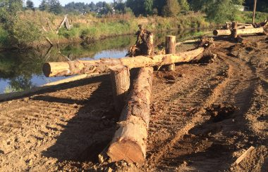 Coweeman River Mitigation Bank Receives Final Approval